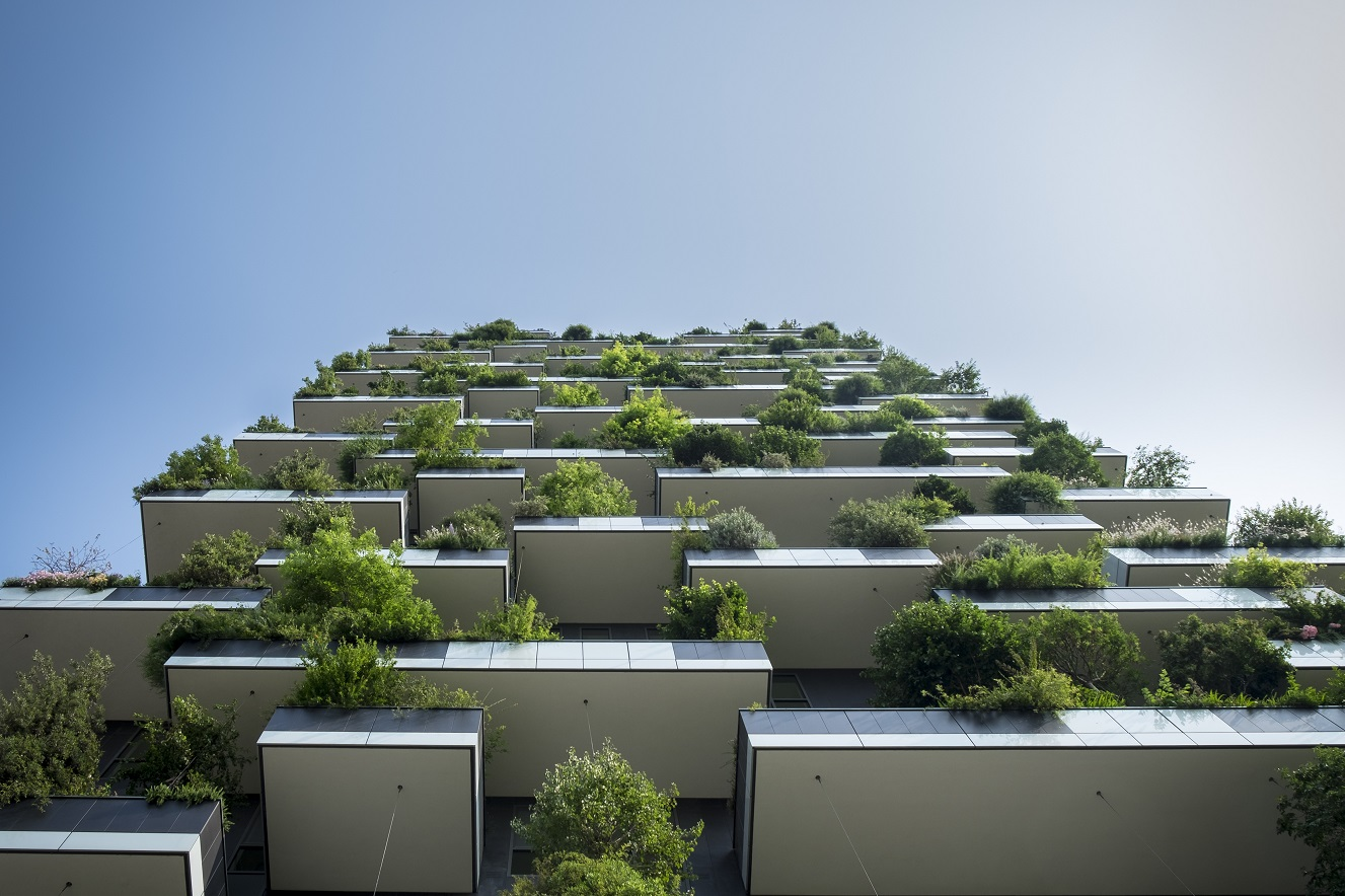 Greenery On Buildings